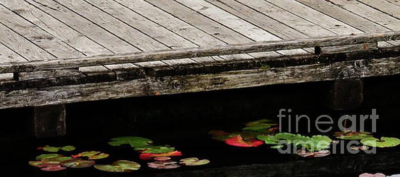 Dock Side by Greg Patzer