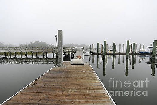 Dale Powell - Dockside Fog - Rivertowne on the Wando