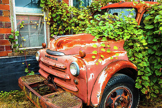 Dodge And Vine by Steven Bateson