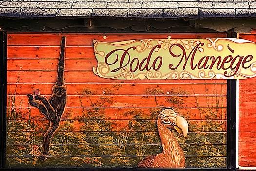 Dodo manege by Valerie Dauce