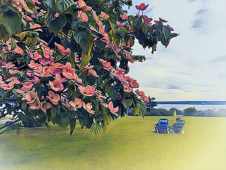 Dogwood Days Of Springtime by Connie Handscomb