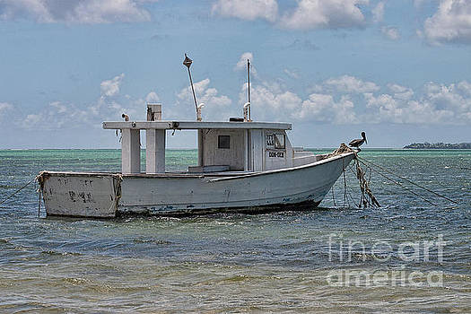 Don Deb on Bon Accord Lagoon by John Edwards