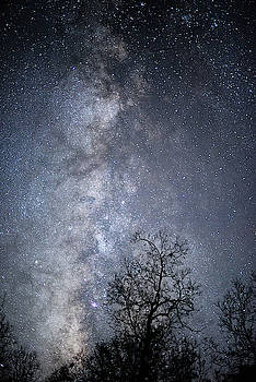The Milky Way Core by Cathy Neth