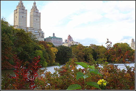 Don't You Love New York in the Fall? by Dora Sofia Caputo Photographic Design and Fine Art