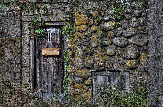 Doorway Through Time by Liz Mackney