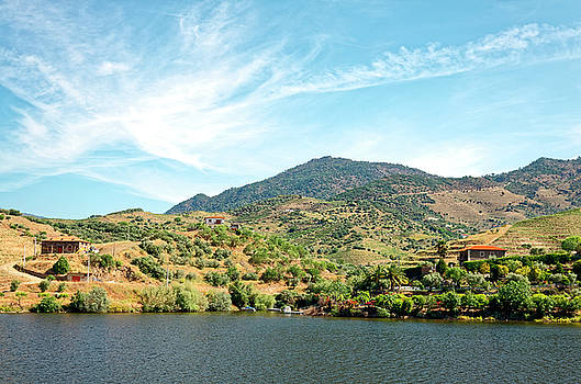Douro River Valley Landscape by Sally Weigand