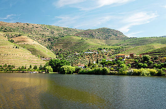 Douro River Valley Scene by Sally Weigand