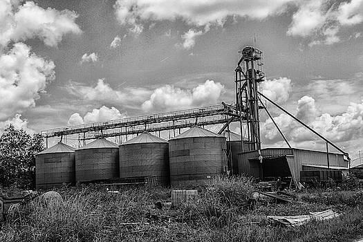 Down on the Farm 2 by Robert Hebert