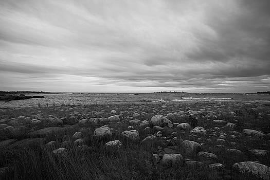 Dramatic sky over a grassy, stone-strewn ocean beach - monochrome by Ulrich Kunst And Bettina Scheidulin