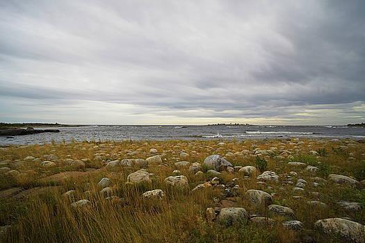 Dramatic sky over a grassy, stone-strewn ocean beach by Ulrich Kunst And Bettina Scheidulin