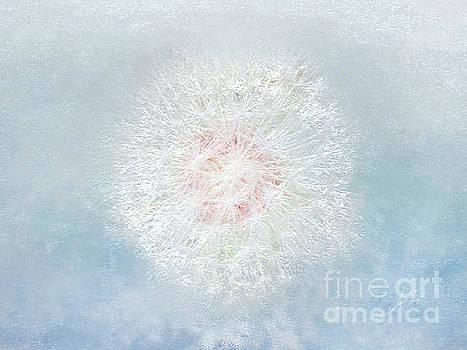 Dream a Little Dream in Sparkle by Anita Faye