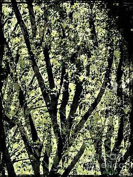 Dreaming Trees 4 by Sarah Loft