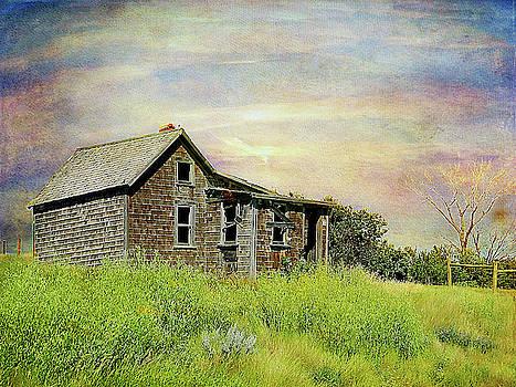 Dreams Past by Blair Wainman