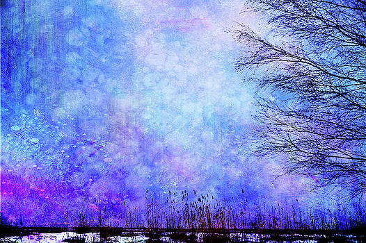 Dreamy Blue by Randi Grace Nilsberg