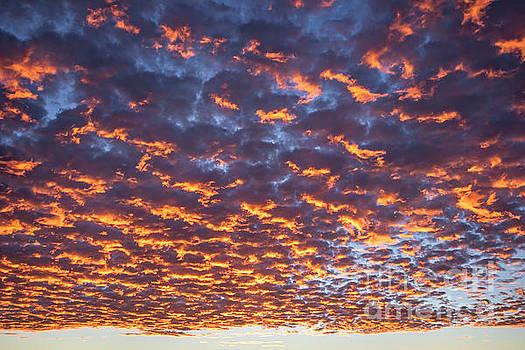Dreamy Clouds by Julia Hiebaum