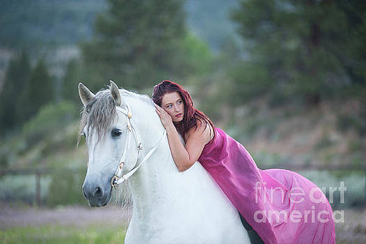 Dreamy White Stallion by Jody Miller