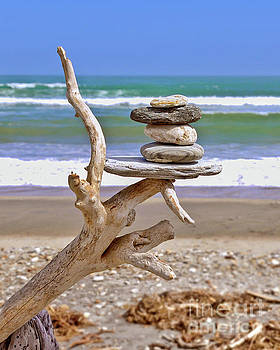 Drift wood and pebbles by Delphimages Photo Creations