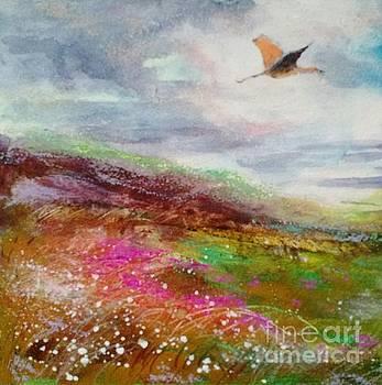 Driftless Soaring by Diane Splinter