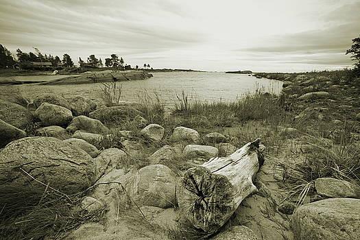 Driftwood at the beach of an ocean bay - sepia by Ulrich Kunst And Bettina Scheidulin