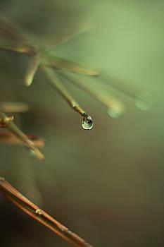 Droplets III by Angela King-Jones
