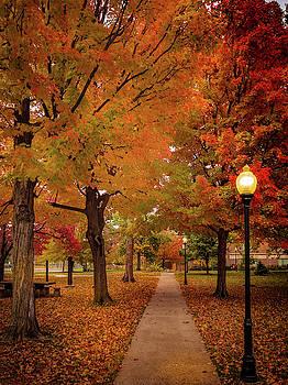 Drury Autumn by Allin Sorenson
