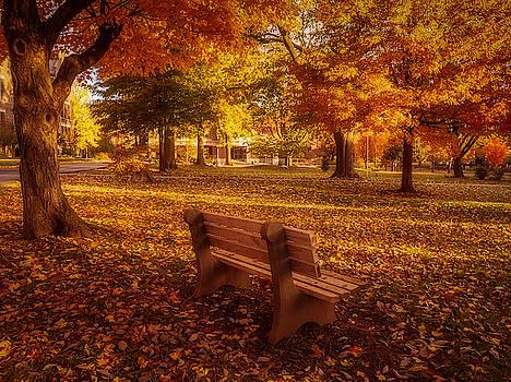 Drury Autumn Color by Allin Sorenson