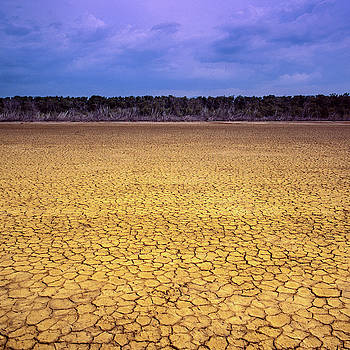 Dry cracked field by Eugenio Opitz