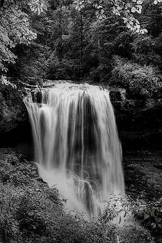 Dry Falls Is Not Dry Black and White by Carol Montoya