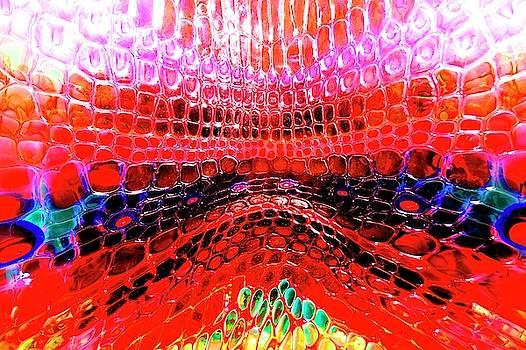 DSC0670 Glass by Daniel Thompson