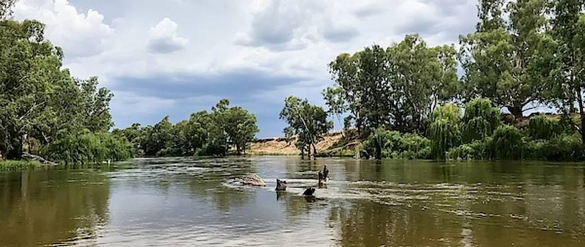 Dubbo River by Sharon Clissold