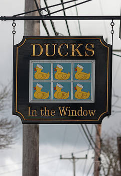 Ducks in the Window by Suzanne Gaff