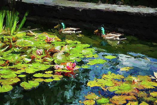 Mike Penney - Ducks on a Lily Pond 9
