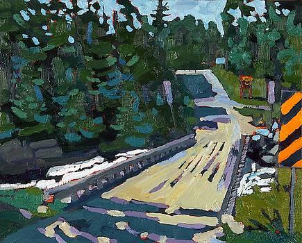 Phil Chadwick - Dumoine La Chute Bridge