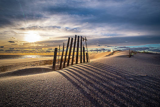 Dune Shadows by John Randazzo