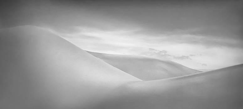 Dunes by Don Schwartz