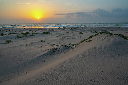 Dunes of Padre by Joey Waves