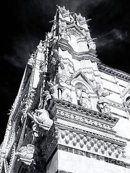 John Rizzuto - Duomo di Siena Sculptures
