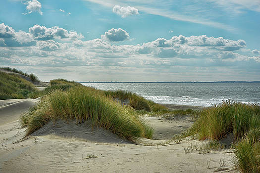 Dutch Dunes by Joachim G Pinkawa