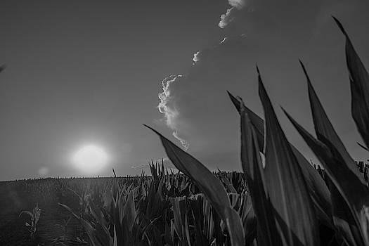 NebraskaSC - Dying Nebraska Thunderstorms at Sunset 037