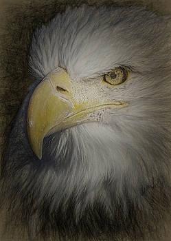 Eagle 5 by Ernie Echols