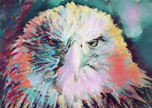 Eagle Abstract by Ernie Echols