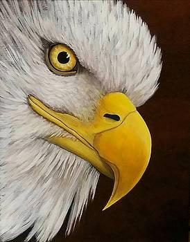 Eagle Eye by Danett Britt