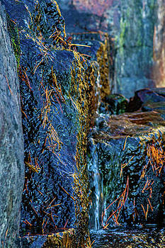 Eagle Falls Abstract by Bill Gallagher