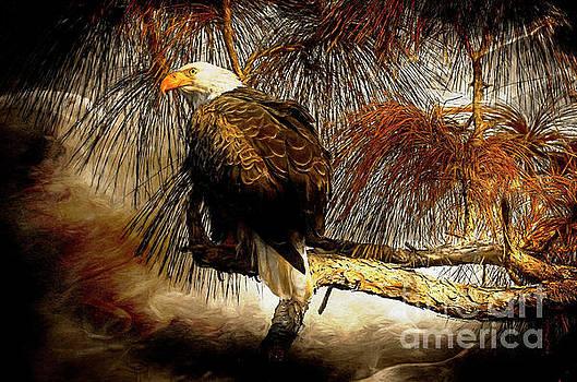 Eagle Painterly by Deborah Benoit