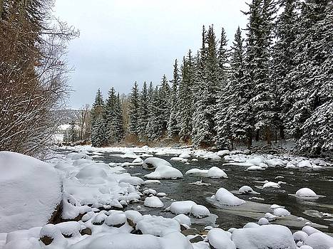 Eagle River Wilderness by Dan Miller