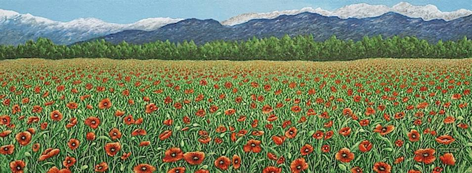 Eardie's Poppies by Mary Ann King