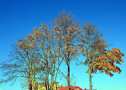 Henryk Gorecki - Early autumn