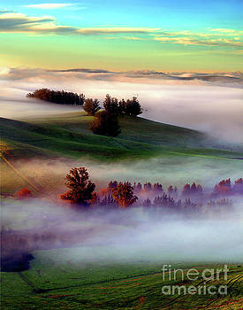 Early Morning Fog and the first light from SunrisePetaluma by Wernher Krutein