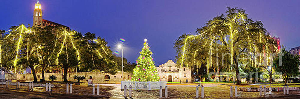 Early Morning Panorama of Christmas Tree and Lights at The Alamo Mission - San Antonio Texas by Silvio Ligutti