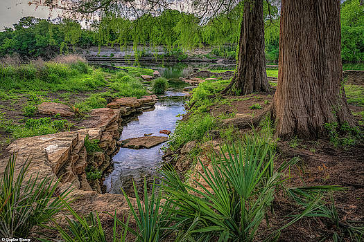 Earthly Ways of Nature by Gaylon Yancy